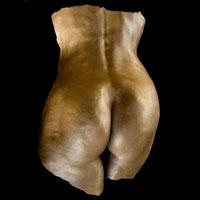 female-botton-cast-plaster-2